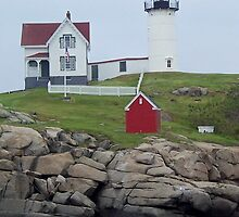 Nubble Light  by Tina  Bark