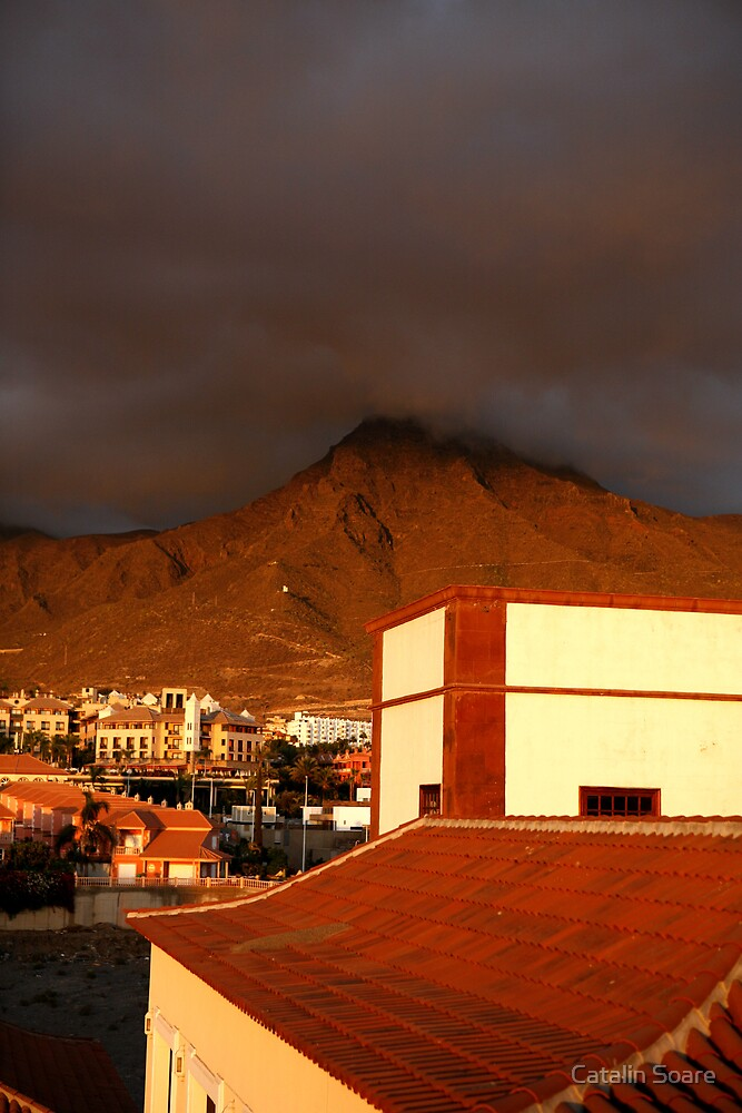 Beautiful life under the volcano! by Catalin Soare