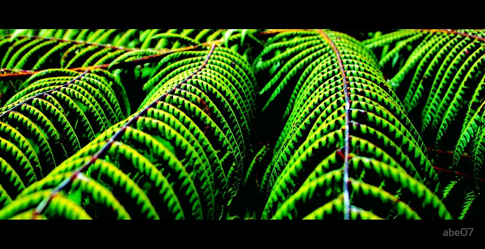 green colour burst by abe07