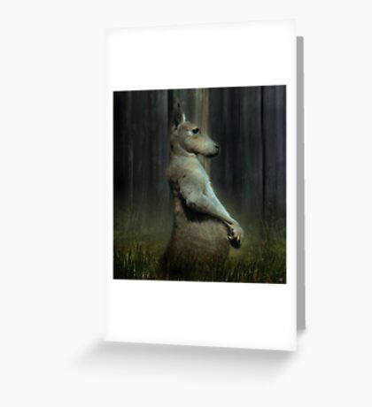 Portrait of a Kangaroo Greeting Card