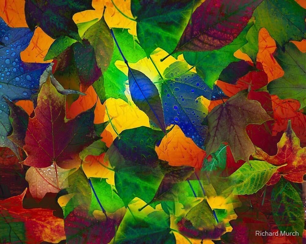 Fall Celebration by Richard Murch