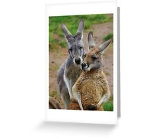 Kangaroo whispers. Greeting Card