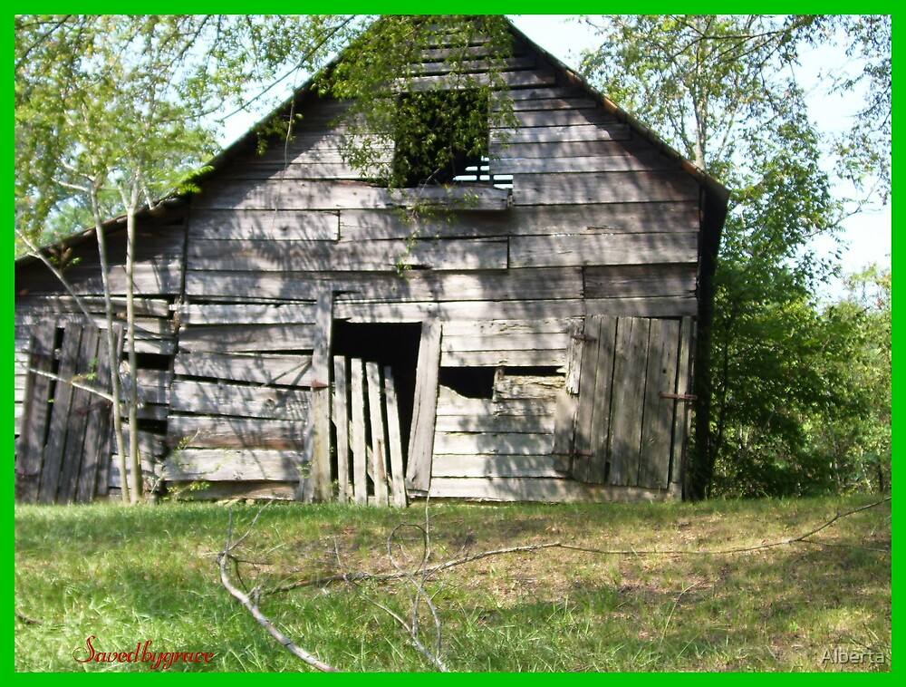 Old Shed by Alberta