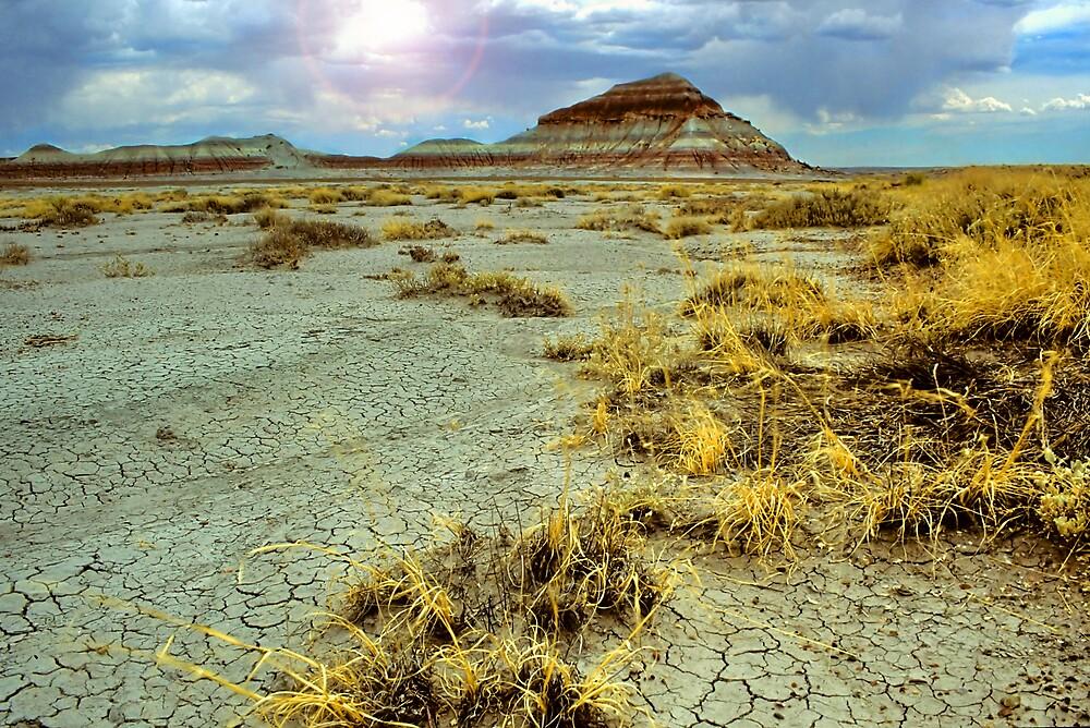 Desert Butte by Jonathan Cohen