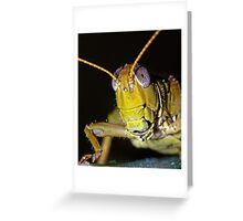 Grasshopper 2 ! Greeting Card