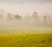 Morning Fog by Susan Gottberg
