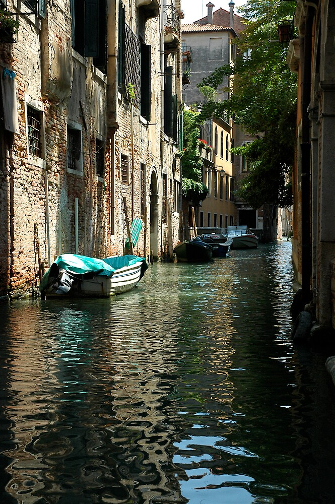 Getting Around Venice by ihancock