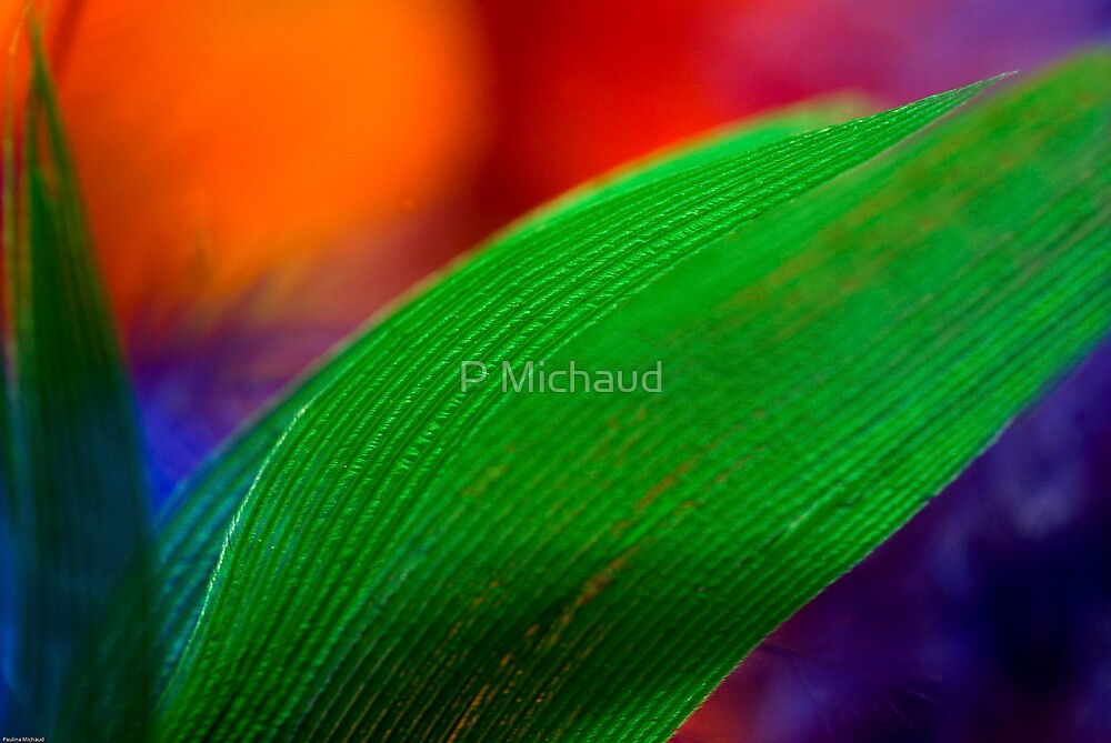 green on green by P Michaud