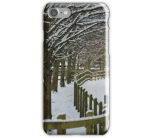 Snow Drive iPhone Case/Skin
