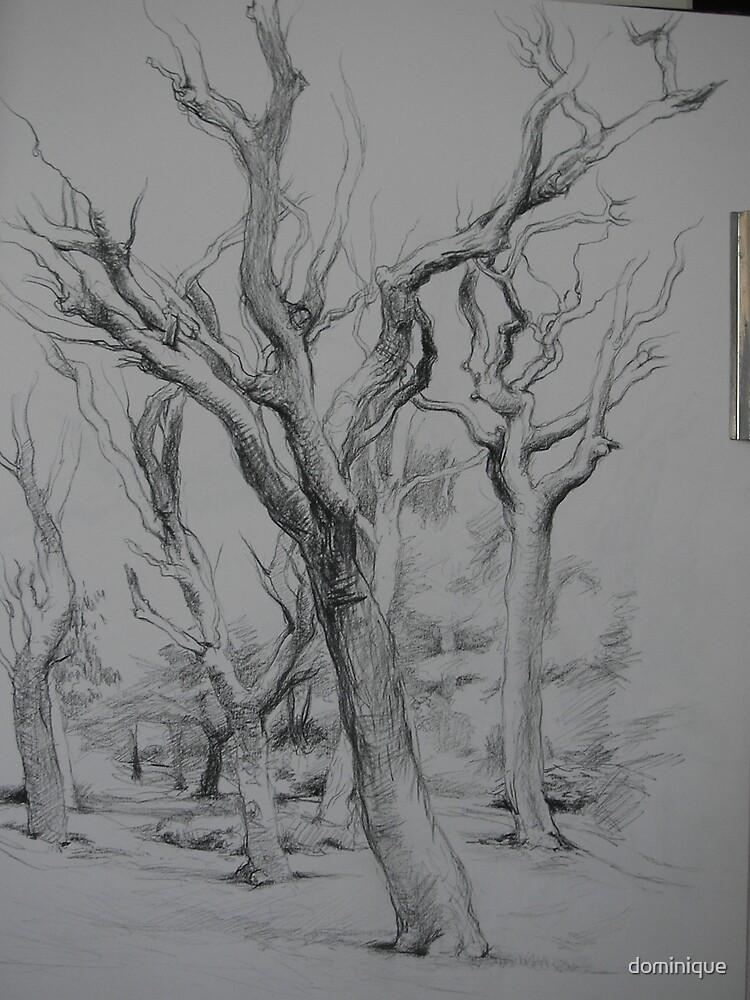 nielsen's park by dominique