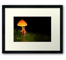 Fairie Glow - Rose & Steve Axford Framed Print