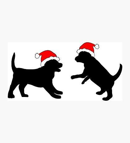 Puppies in Christmas Hats Photographic Print