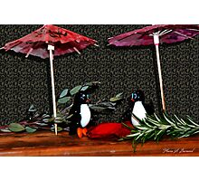 Penguin Romance Photographic Print