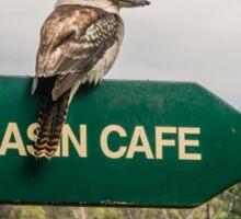 Cataract Gorge Kookaburra Sticker
