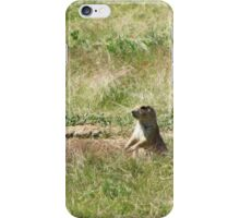 Prairie Dog, Wyoming iPhone Case/Skin