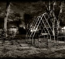 A Dream and its Playground by Robert Ibelings