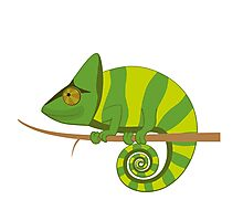 Funny smiling cartoon chameleon Photographic Print