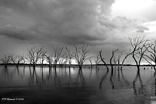 B/W Treeline by grinandbearit