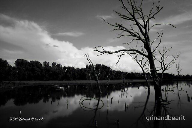 Cloud Reflections by grinandbearit