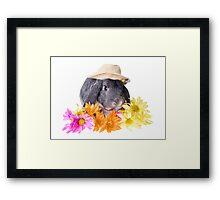 Country Gardener Rabbit Framed Print