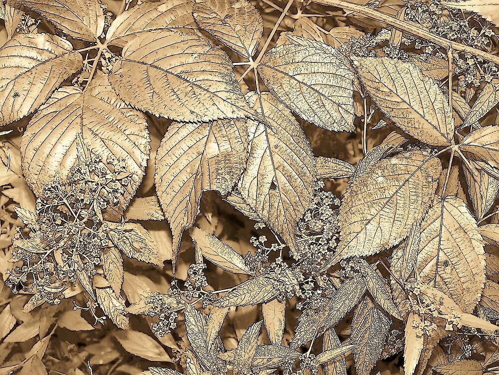 Brown Leaves by Gene Cyr