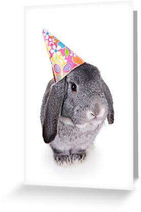 Birthday Rabbit by idapix