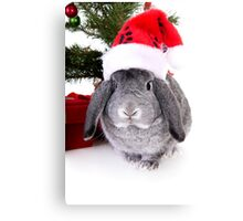 Christmas Rabbit Canvas Print