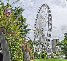 THE WHEEL OF BRISBANE- ANOTHER VIEW by Margaret Stevens