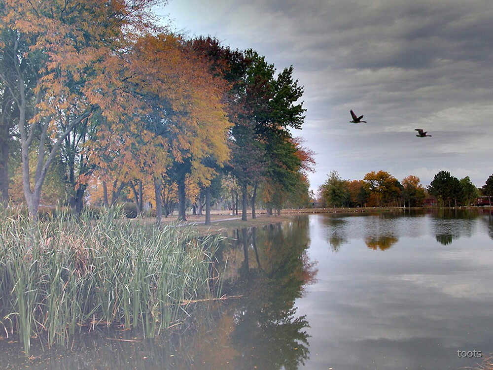 Autumn Day by toots