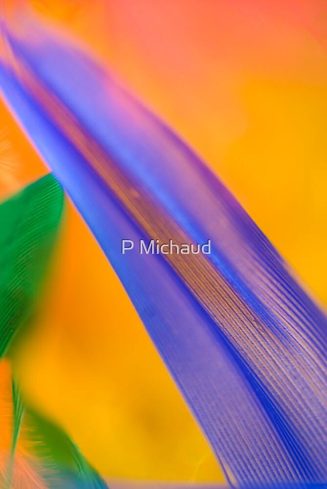 blue leaf by P Michaud