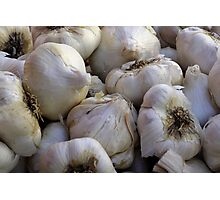 Garlic in the Raw Photographic Print