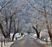 Frosty Sparks Lane HDR by photodug