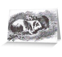 Guinea Pig Love Greeting Card