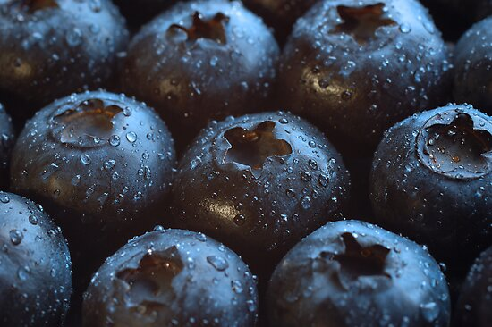 Blueberries by Wisent