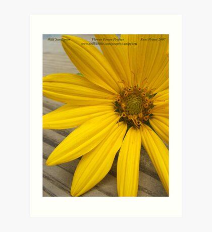 Wild Sunflower for Flower Power Project Art Print