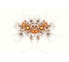 The Bug Photographic Print
