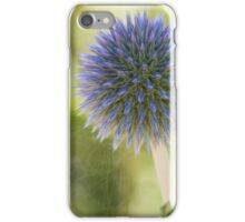 Echinops Blue iPhone Case/Skin