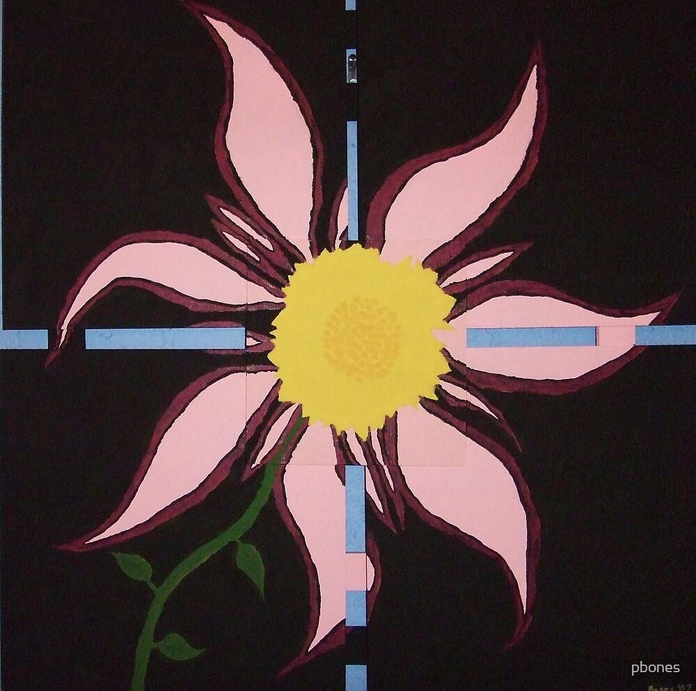 In Bloom by pbones