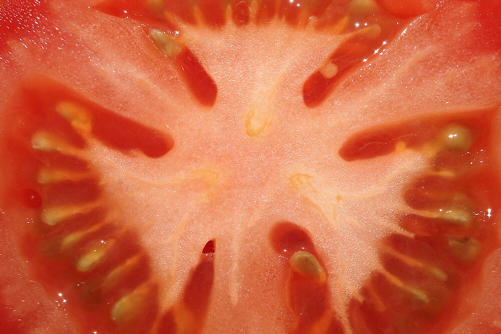 You Say Tomato... by Rachael Young