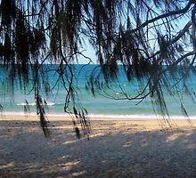 Woodgate Beach Qld by gillsart