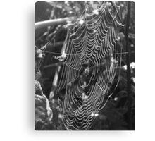 Web on a Dewy Day Canvas Print