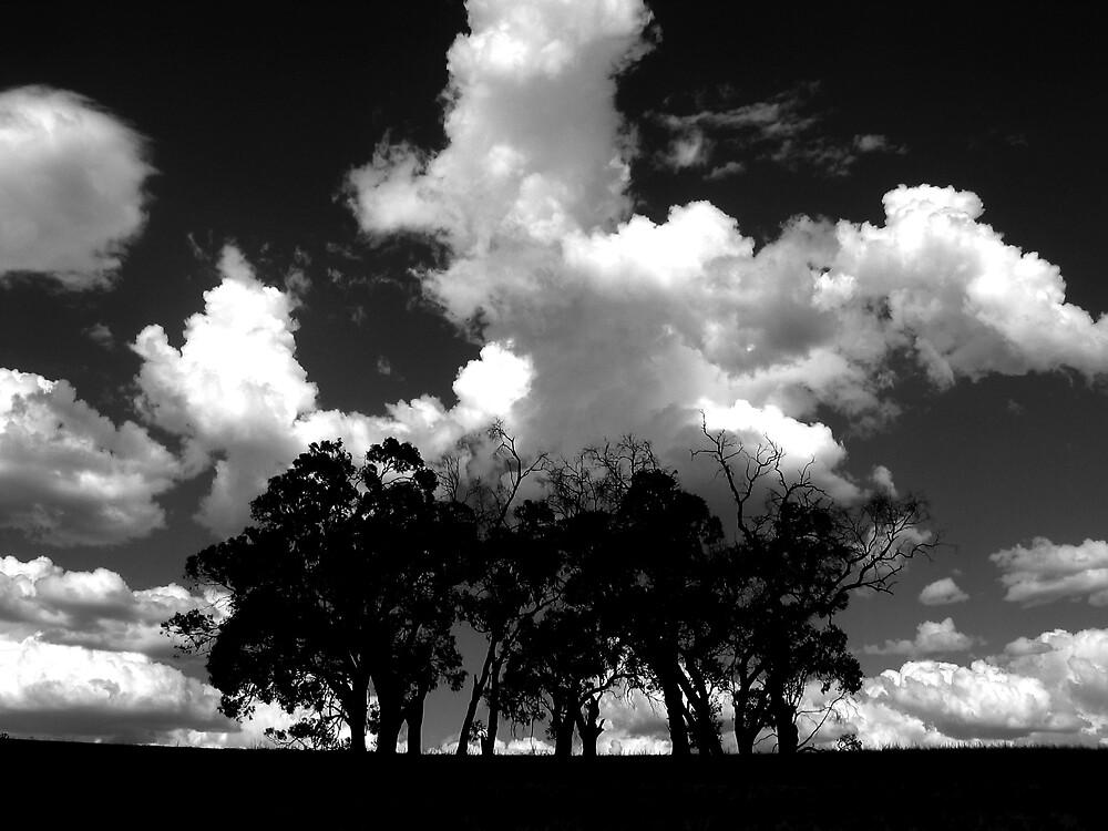 Big sky by Andrew Edgar