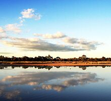 Reflections by Lauren Parlet