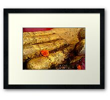 buddha nepal Framed Print