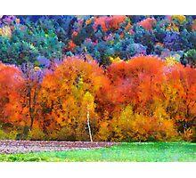 autumn in bieszczady Photographic Print