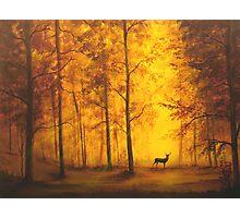 Autumn Deer Photographic Print