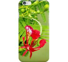 Flamboyant Flame  iPhone Case/Skin