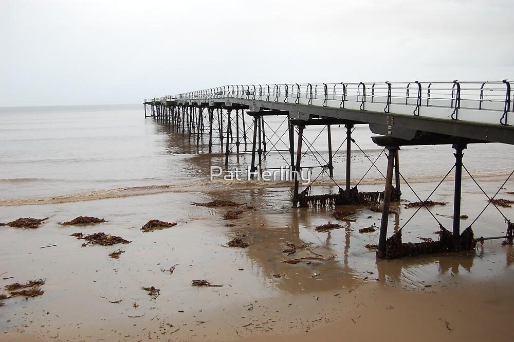 Saltburn Pier in Storm by Pat Herlihy