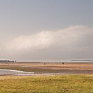 Low tide at Wellington point by Murray Swift