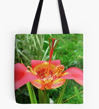 Tigridia pavonia--Tiger Flower (Red) Tote Bag